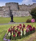 Een bloemrijk Kasteel Beaumaris op Anglesey, Wales Stock Afbeeldingen