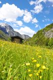 Een blokhuis in de Oostenrijkse Alpen stock afbeelding