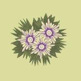 Een boeket van bloemen met violette uiteinden en groene bladeren Stock Fotografie