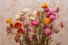 Een boeket van droge bloemen stock fotografie
