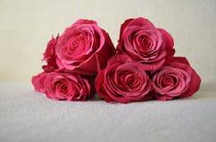 Een boeket van levendige roze rozen Stock Afbeelding