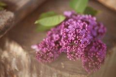 Een boeket van lilac, lilac bloemen op houten bacground Royalty-vrije Stock Afbeeldingen