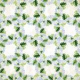 Een boeket van madeliefje bloeit - bloemen, bladeren op waterverfachtergrond Collage van bloemen, bladeren op een waterverfachter royalty-vrije illustratie