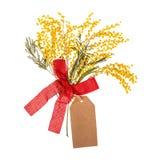 Een boeket van mimosa bloeit met de nota van het prijsetiket over witte achtergrond royalty-vrije stock afbeeldingen