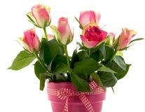 Een boeket van mooie roze rozen Royalty-vrije Stock Afbeelding
