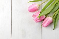 Een boeket van mooie roze tulpen bloeit op een witte houten lijst De lente vakantie Hoogste mening Plaats voor tekst stock foto