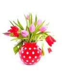 Een boeket van rode en roze tulpen Stock Afbeelding