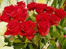 Een boeket van rode rozen stock afbeelding