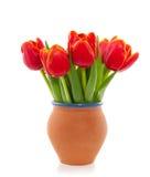 Een boeket van rode tulpen Stock Foto's