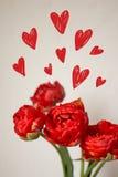 Een boeket van rode tulpen Stock Afbeelding