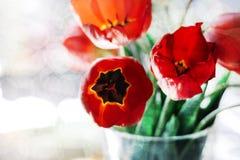Een boeket van rode tulpen in een vaas op de vensterbank Een gift aan de dag van een vrouw van rode tulp bloeit stock afbeeldingen
