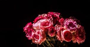 Een boeket van roze rozen in zonlicht stock afbeeldingen