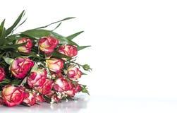 Een boeket van rozen, geel en rood op een witte achtergrond Royalty-vrije Stock Afbeeldingen