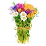 Een boeket van wildflowers Geïsoleerde watercolor Stock Afbeeldingen