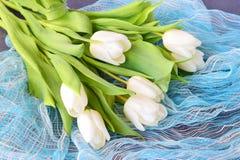 Een boeket van witte verse tulpen op een blauwe abstracte textuurachtergrond Liefde en huwelijksconcept romaans Royalty-vrije Stock Afbeeldingen