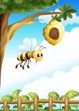 Een boom dichtbij de omheining met een bijenkorf en een bij Stock Fotografie