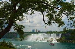 Een boom en een watervalmening in Niagara vallen royalty-vrije stock fotografie