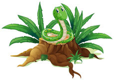 Een boomstam met een groene slang vector illustratie