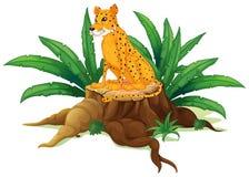 Een boomstam met een jachtluipaard Royalty-vrije Stock Afbeeldingen