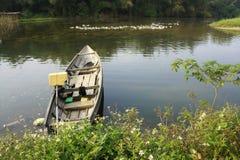 Een boot en de zwemmende eenden Royalty-vrije Stock Afbeeldingen
