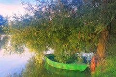 Een boot op een boom op de kust van een nevelig meer Stock Foto