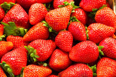 Een bos van aardbeien Royalty-vrije Stock Fotografie