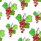 Een bos van bes n een groene achtergrond Mooi patroon reeks vectorschetsen Geschikt voor behang in de keuken Vector illustratie stock illustratie