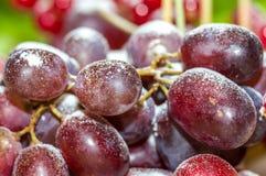 Een bos van druiven stock afbeelding