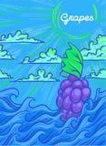 Een bos van druiven drijft op de golven Vector illustratie vector illustratie