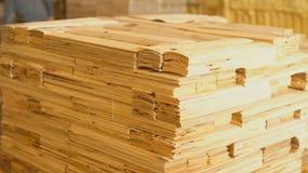 Een bos van houten planken stock video