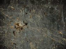 Een bos van insect in een spin` s Web wordt geplakt heeft een abstract patroon dat gemaakt Stock Foto's