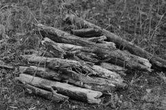 Een bos van kreupelhout verzamelde in het bosbrandhout voor het verwarmen van de open haard in het huis van de jager stock foto's