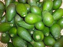 Een bos van rijpe avocado's stock foto