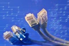 Een bos van UTP-kabels Stock Fotografie