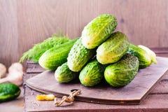 Een bos van vers komkommers, dille en knoflook Royalty-vrije Stock Afbeeldingen