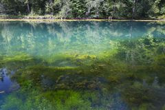 Een bosdiemeer met blauw water met radon wordt gevuld springt op stock fotografie