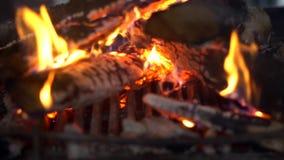 Een brand brandt in een open haard, Brand warm te houden stock footage