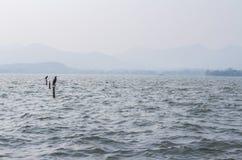 Een breed diep blauw meer Stock Fotografie