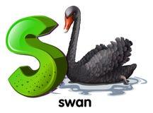Een brief S voor zwaan Royalty-vrije Stock Afbeelding