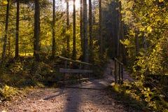 Een brug leidt een weg naast een meer stock fotografie