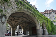 Een brug met groene wijnstokken in Zürich Stock Afbeeldingen
