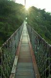 Een brug met zonlicht Royalty-vrije Stock Foto's