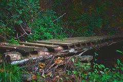Een brug van boomboomstammen en hout dat wordt gemaakt stock afbeelding
