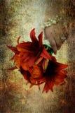 Een bruid die een boquet van bloemen houdt royalty-vrije illustratie