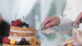 Een bruid en een bruidegom snijden hun huwelijkscake stock videobeelden