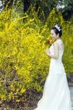Een bruid met de witte tribune van de huwelijkskleding door Gouden jasmijn bloeit Royalty-vrije Stock Foto's