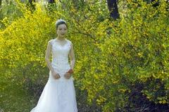 Een bruid met de witte tribune van de huwelijkskleding door Gouden jasmijn bloeit Royalty-vrije Stock Foto