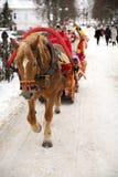 Een bruin paard met een slee, Suzdal, Rusland Stock Foto