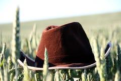 Een bruine hoed stock fotografie