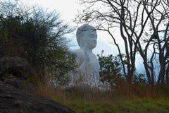Een Buddhas-standbeeld in Mihinthalaya Royalty-vrije Stock Foto